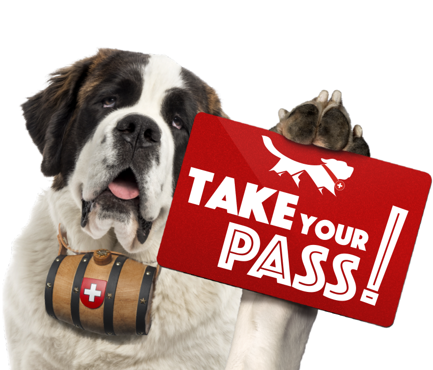 PASS Saint-Bernard
