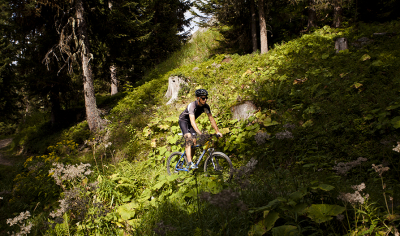 Mountain bike, La Fouly alp