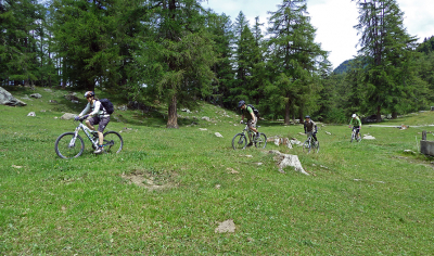 Mountain bike / Ebike Col des Planches, Tour n°778